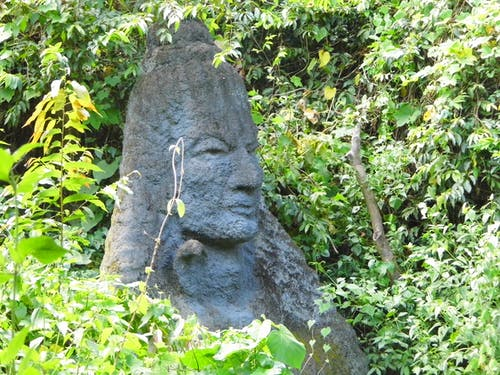 Free stock photo of #lordsiva #tales #thenmala_ecotourism #nature