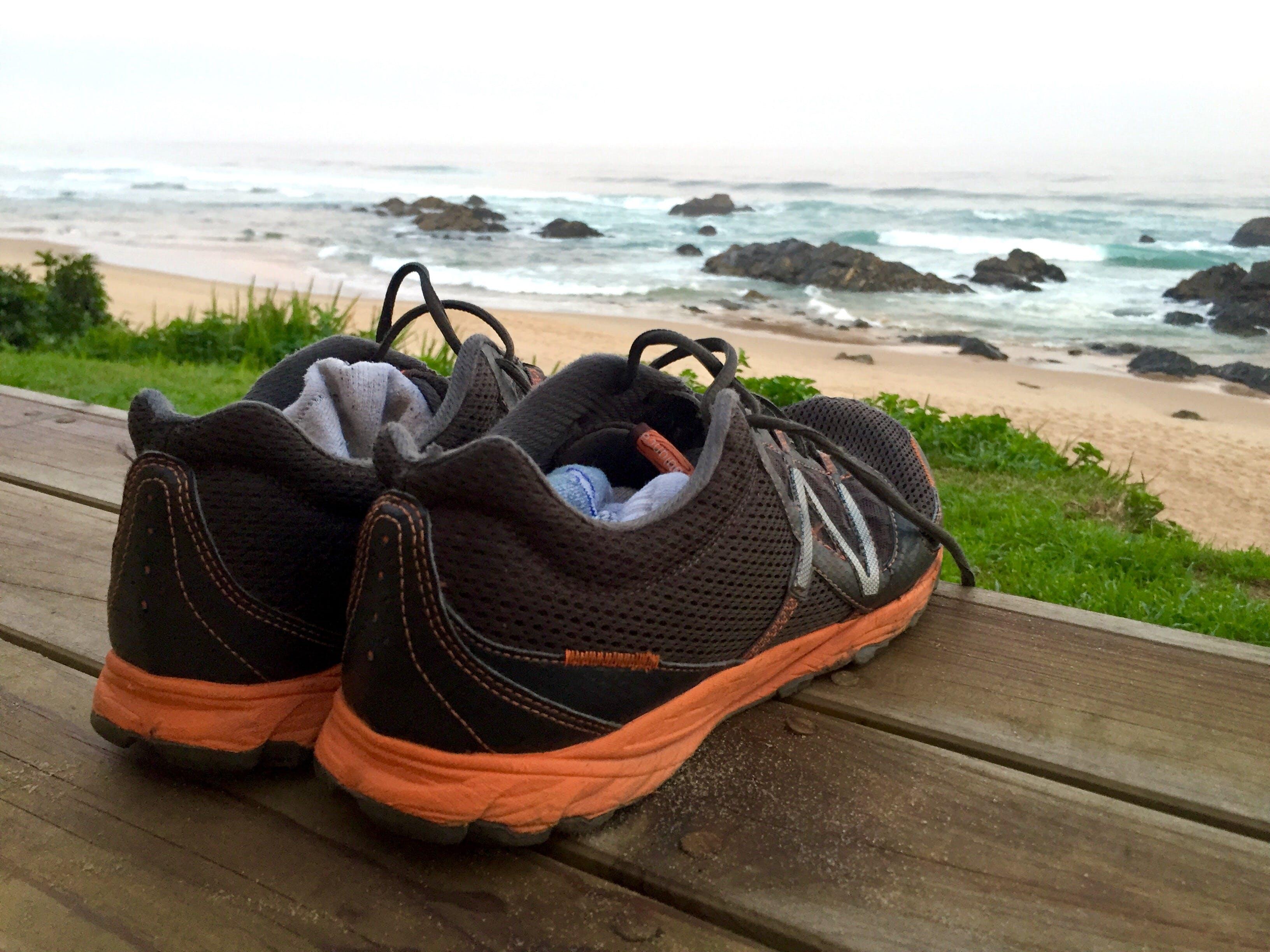 Free stock photo of wood, sea, beach, vacation