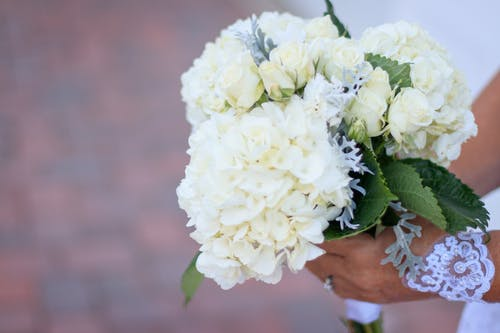 Person Holding Bouquet of White Petaled Flowers