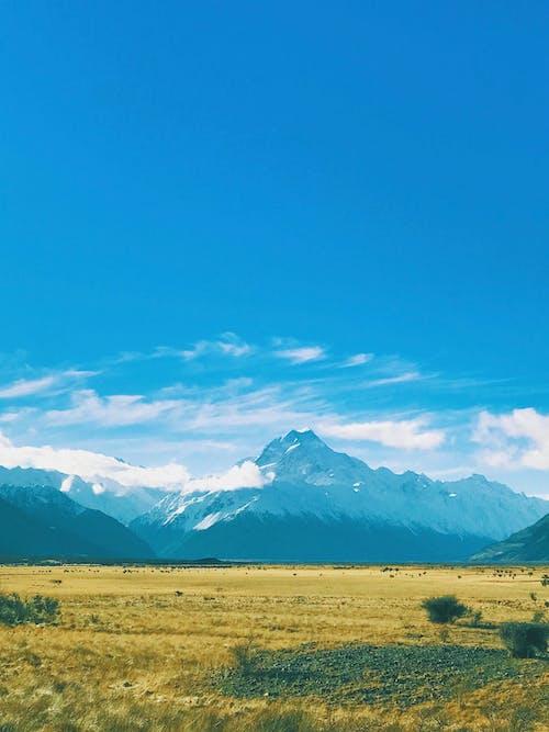 Cánh đồng Cỏ Gần Núi Dưới Bầu Trời Trong Xanh