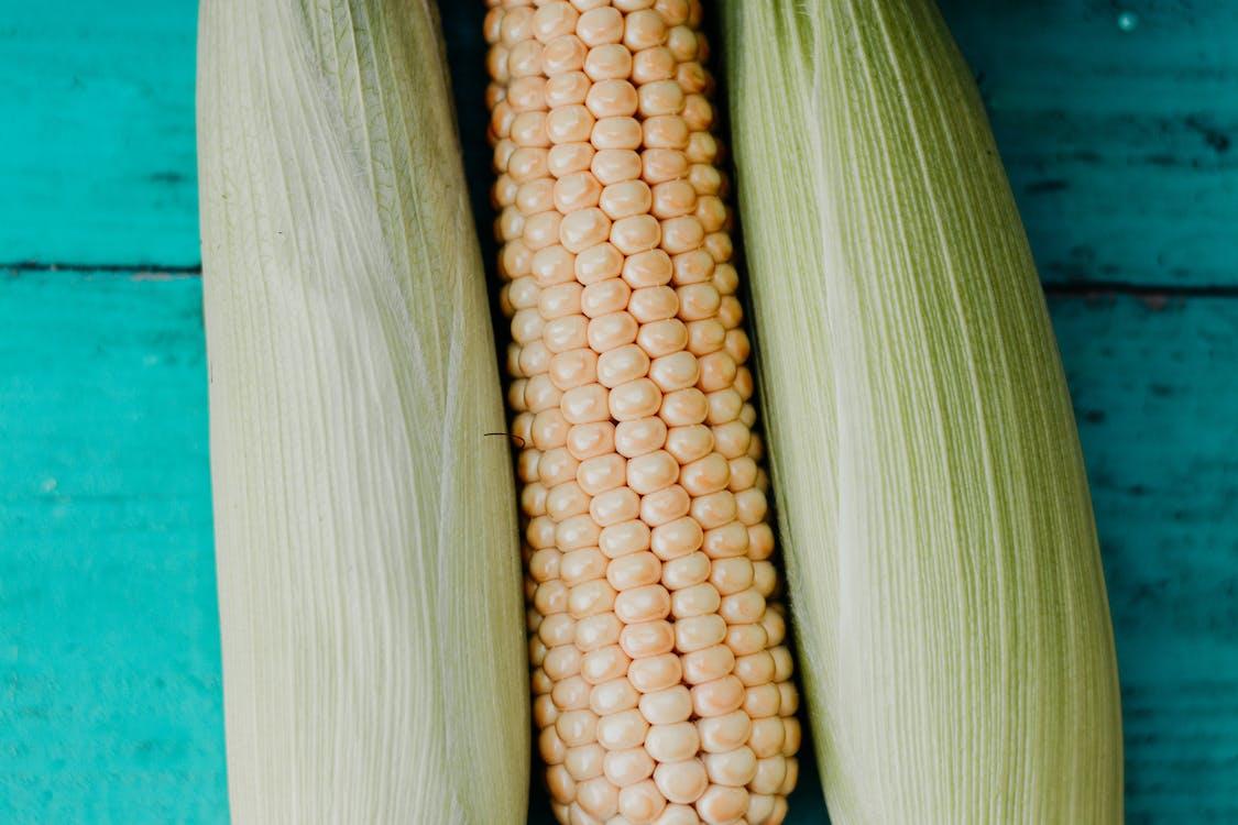 青い表面のトウモロコシの穂軸
