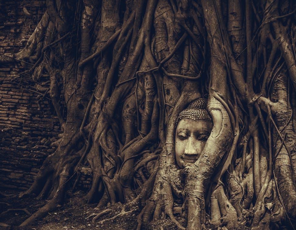ayutthaya, buddhistisk tempel, Thailand