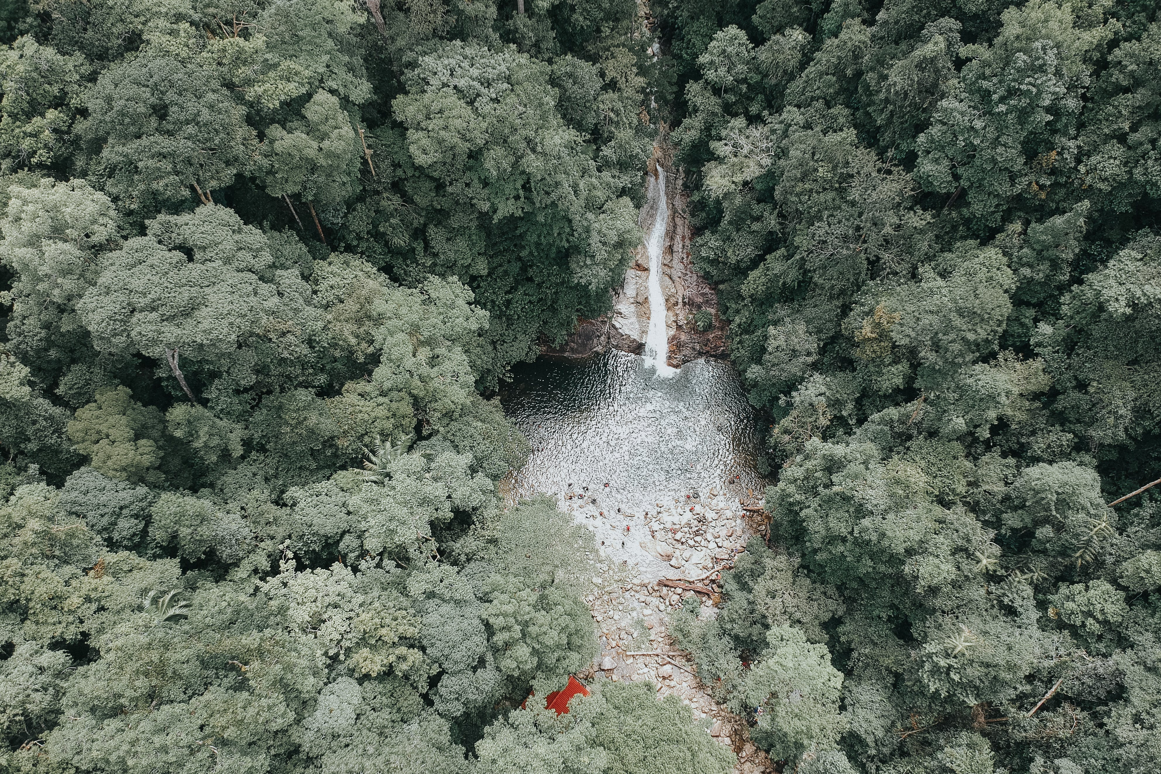 Bird's-eye View Photography Waterfalls Surrounded by Trees
