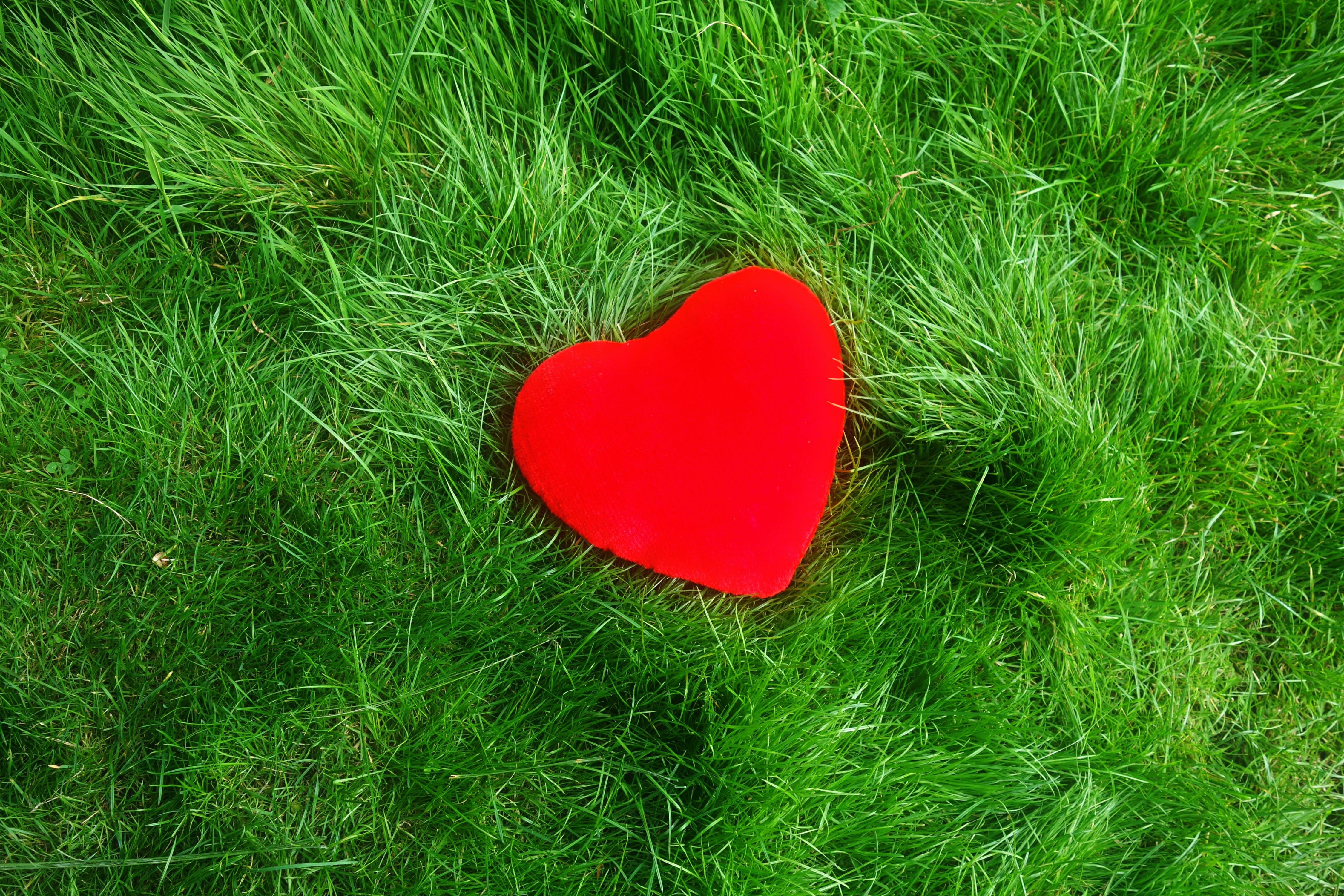 of heart, love, romance, romantic