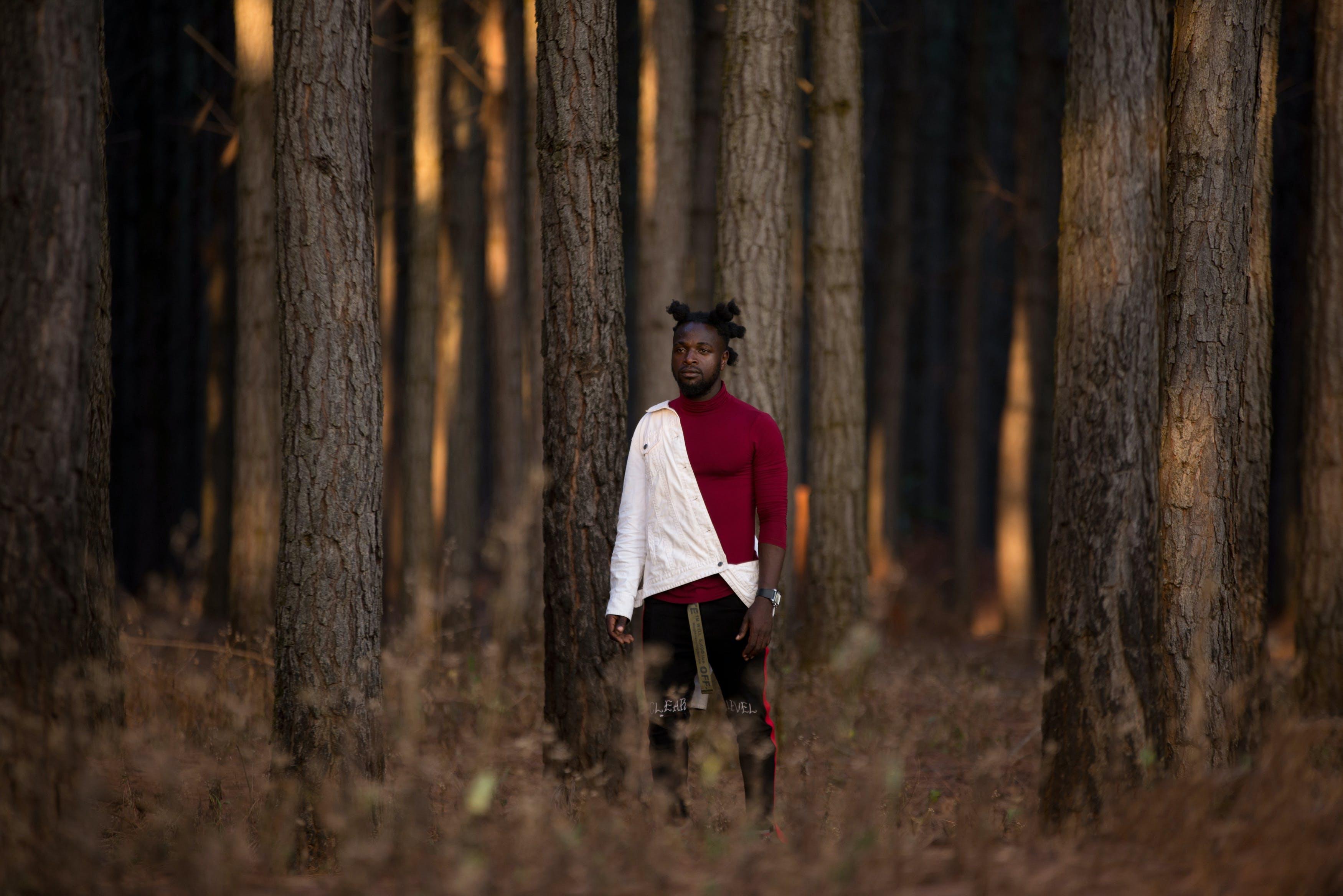 Kostenloses Stock Foto zu landschaft, mann, person, wald