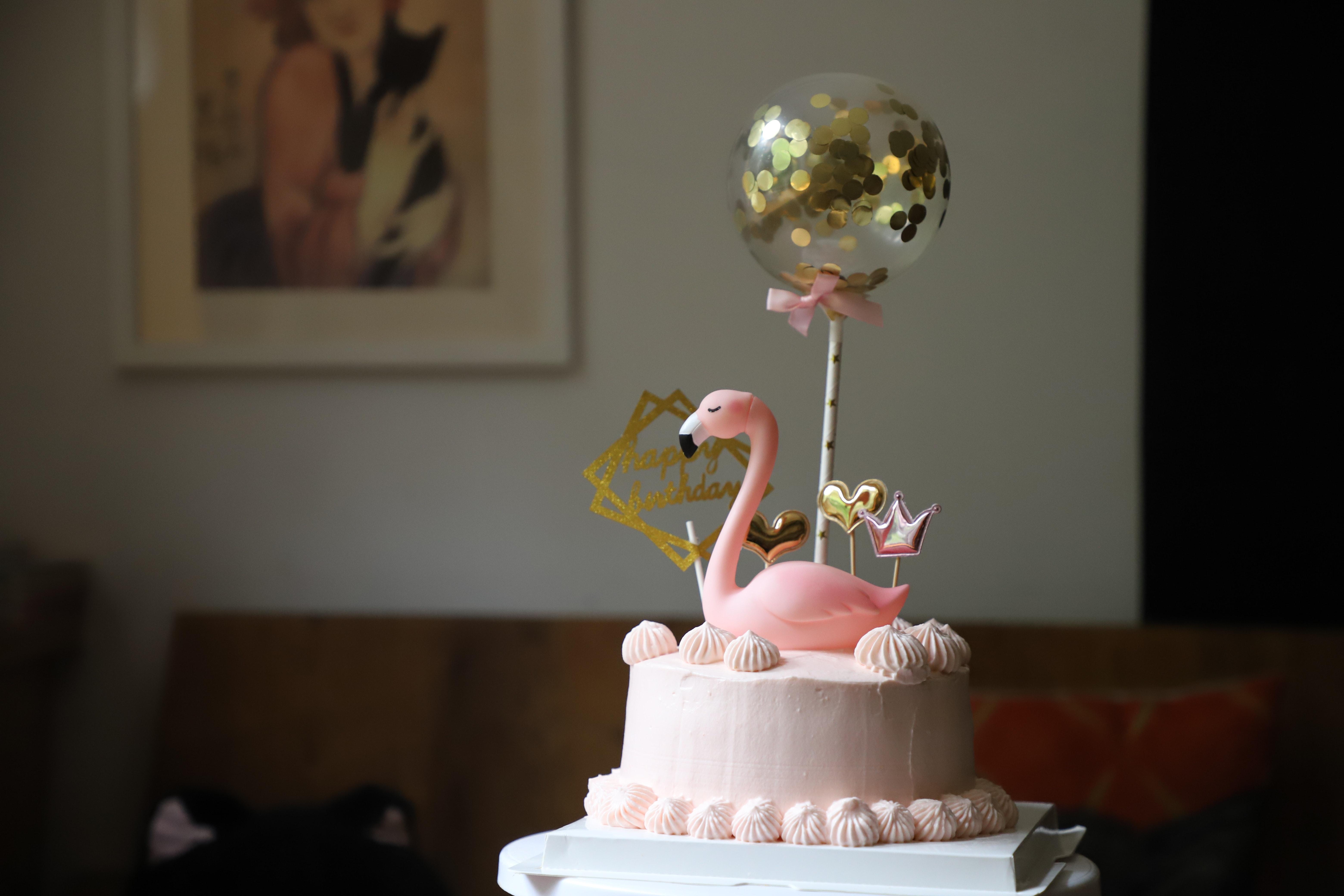 250 Amazing Birthday Cake Photos Pexels Free Stock Photos