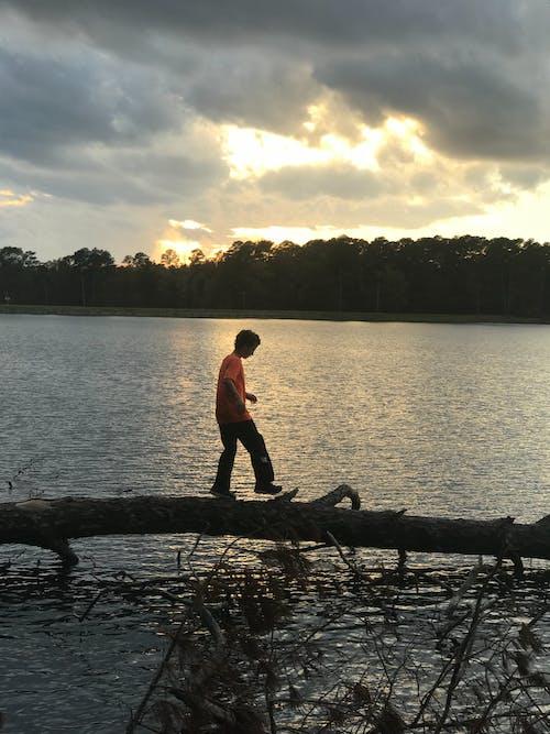 Free stock photo of sunset, walking