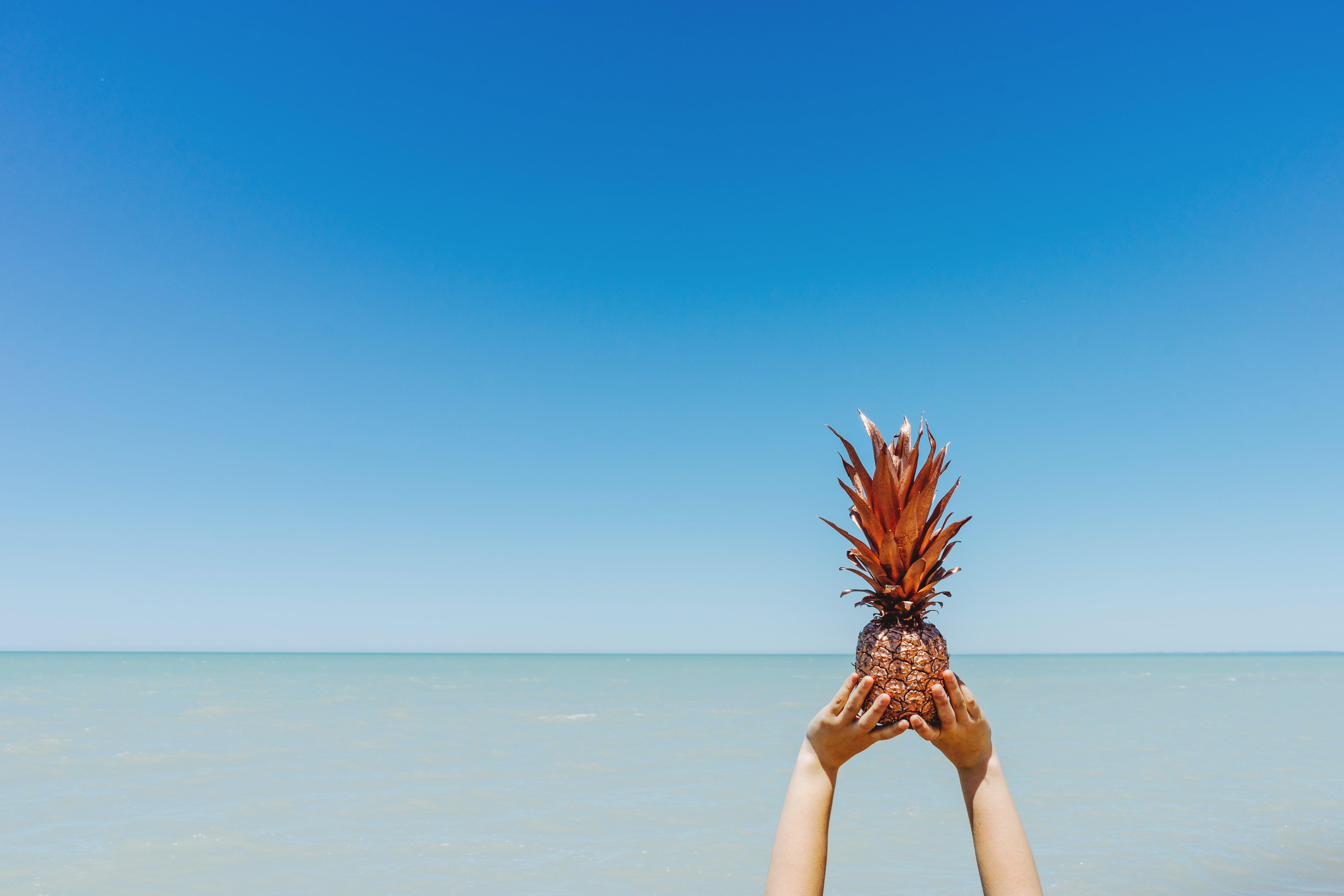 Kostenloses Stock Foto zu ananas, draußen, frucht, hände