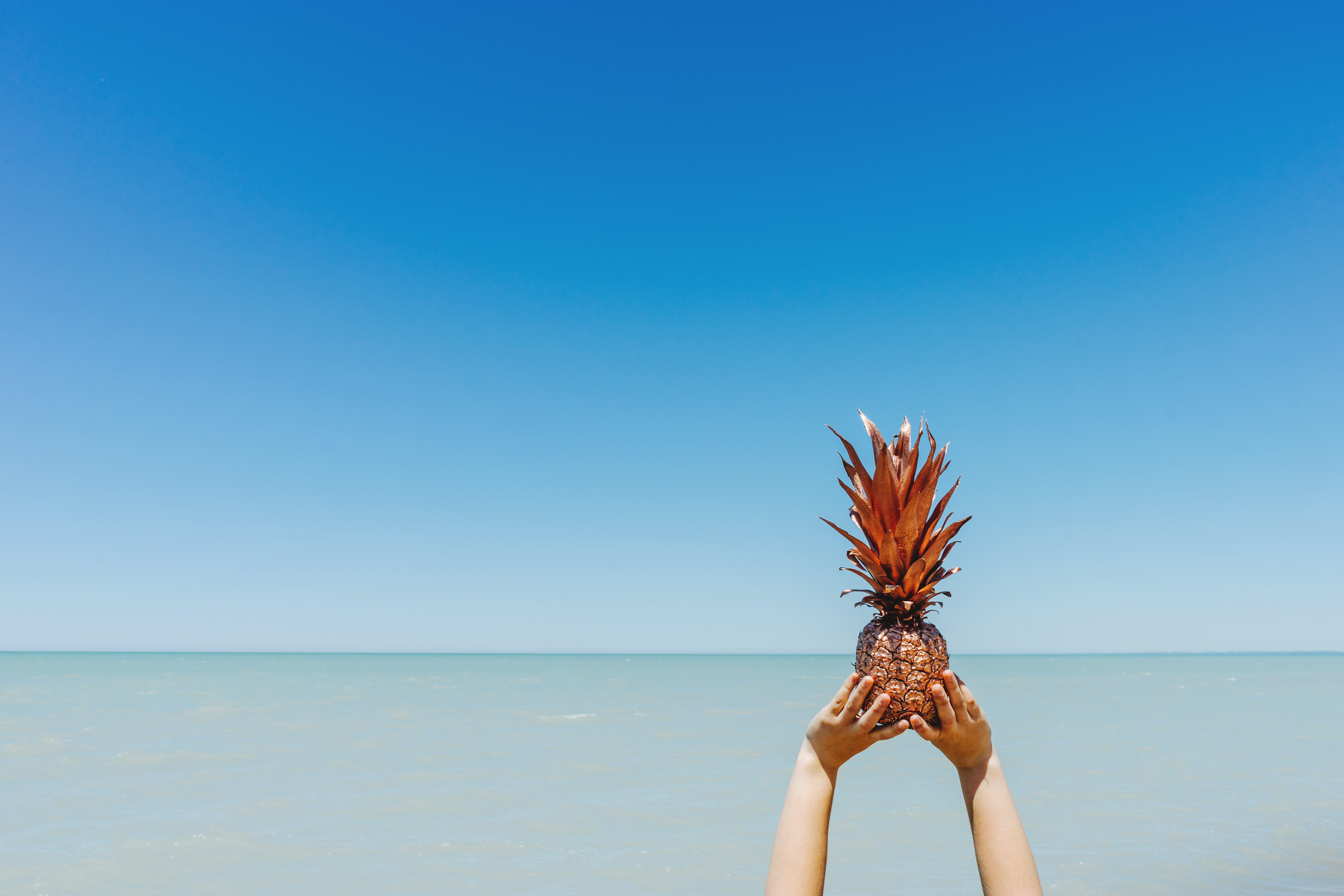 Person Holding Lifted Pineapple Fruit