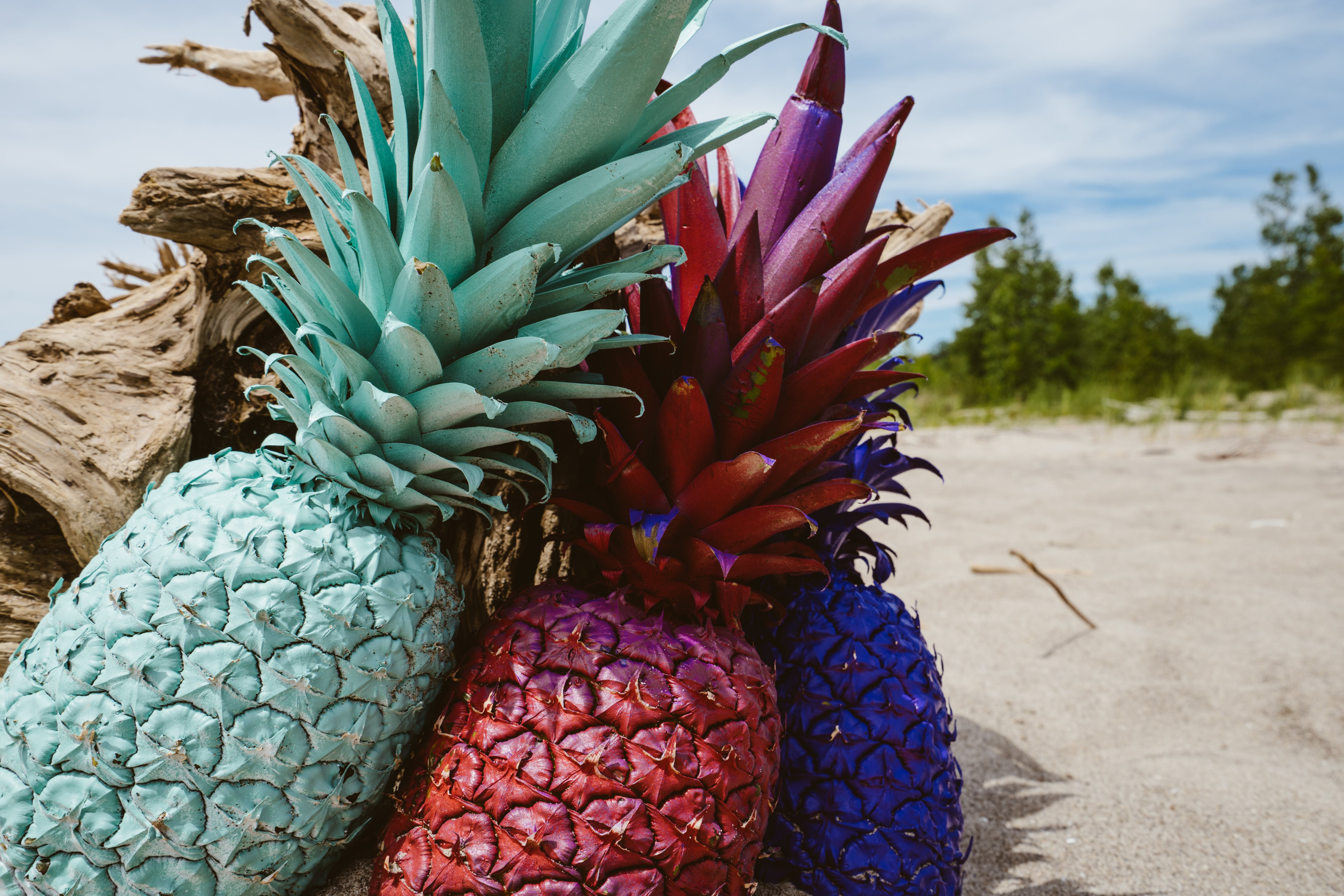 Teal, Red, and Purple Pineapples on Sand