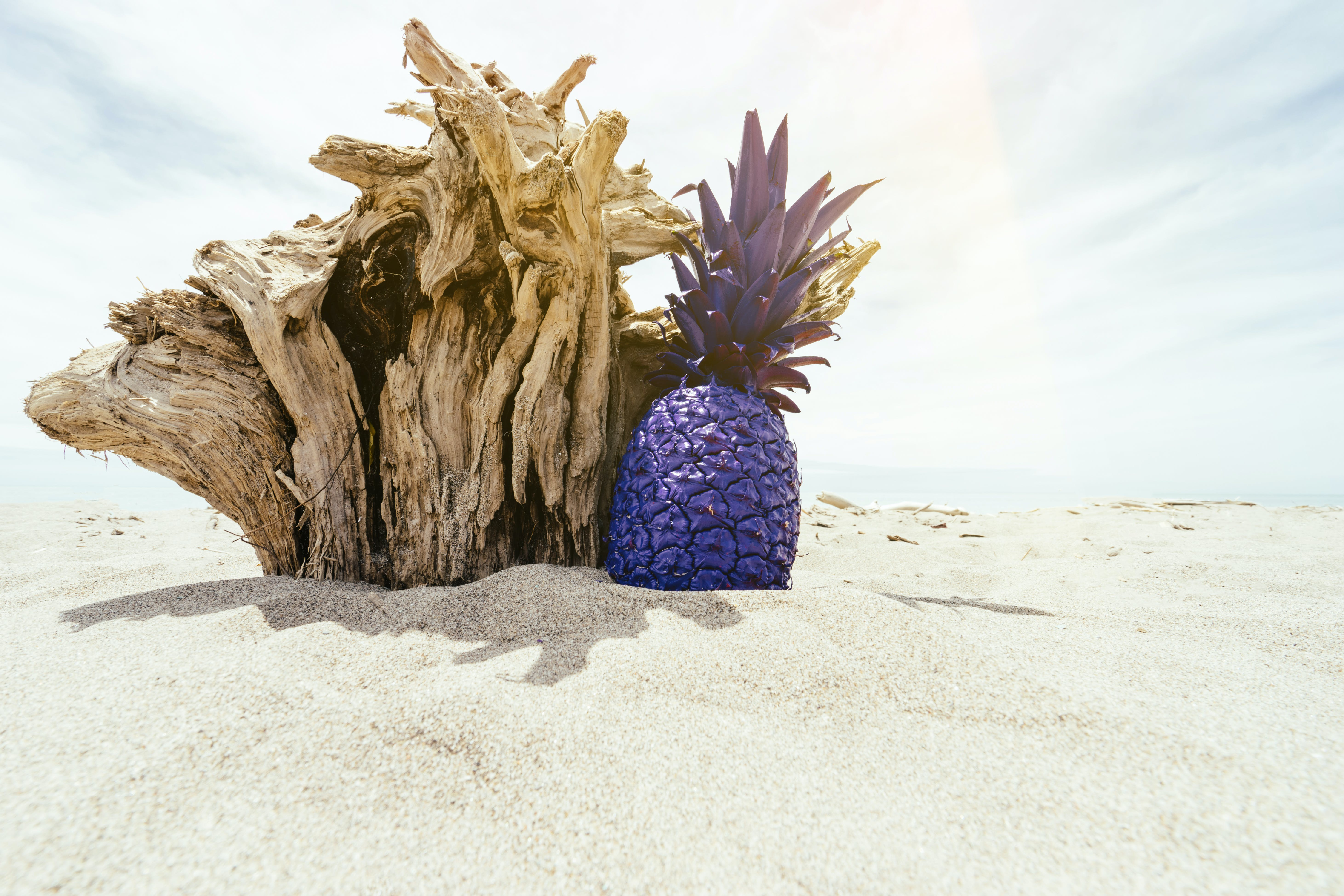 Purple Pineapple on Sand