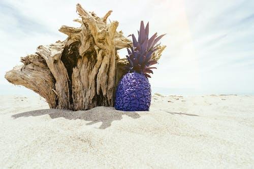 Purple Pineapple on Sand