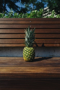 Free stock photo of wood, bench, trees, pineapple