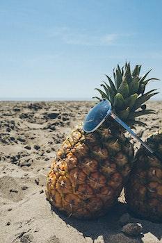 Free stock photo of beach, sunglasses, sand, summer