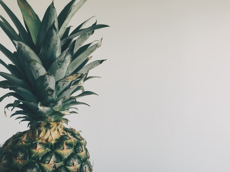 Free stock photo of pineapple, fruit, tropical, copyspace