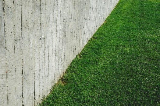 Free stock photo of wood, landscape, nature, pattern