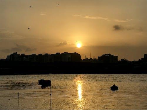 Free stock photo of boat, boats, evening sun, golden sun