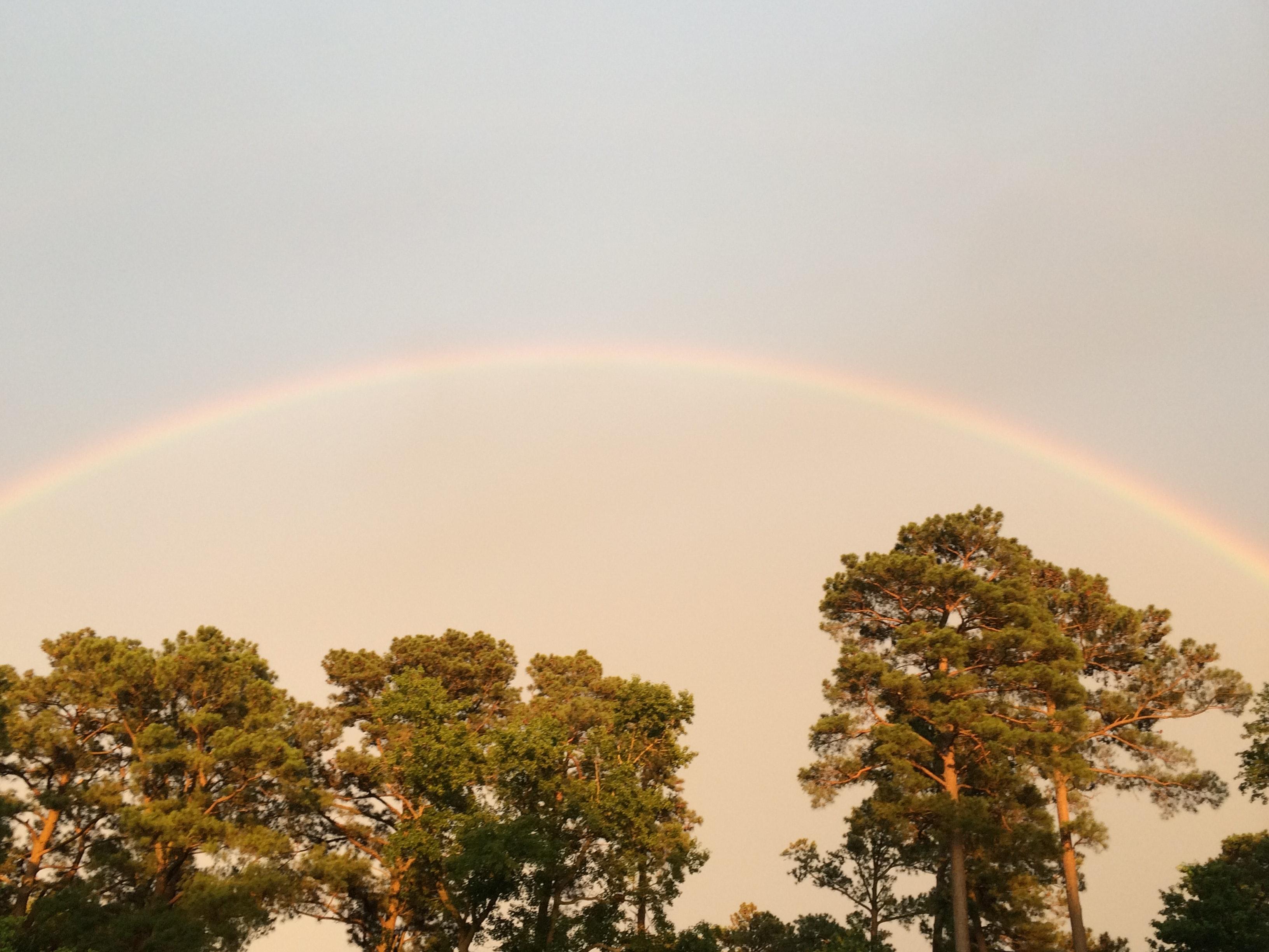 Free stock photo of dusk, rainbow, sky