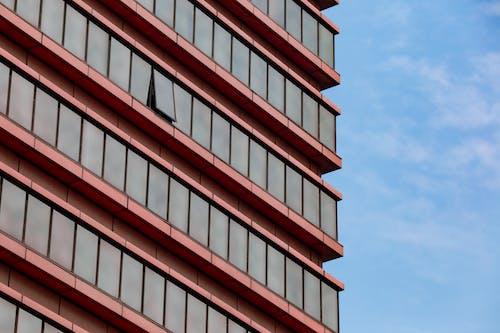 Foto profissional grátis de arquitetura, arranha-céu, construção, janelas