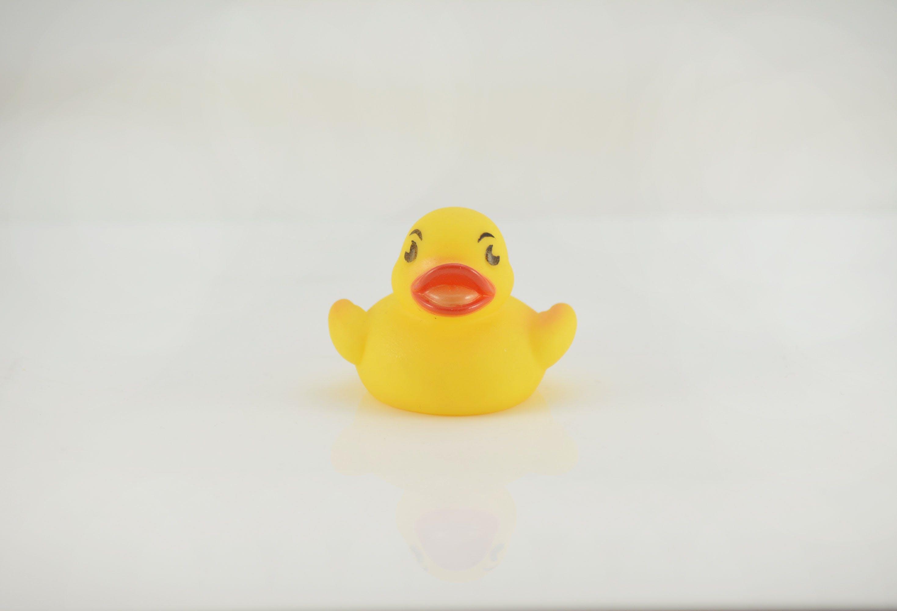 Gratis lagerfoto af bad legetøj, ducky, gummi ducky, gummi legetøj
