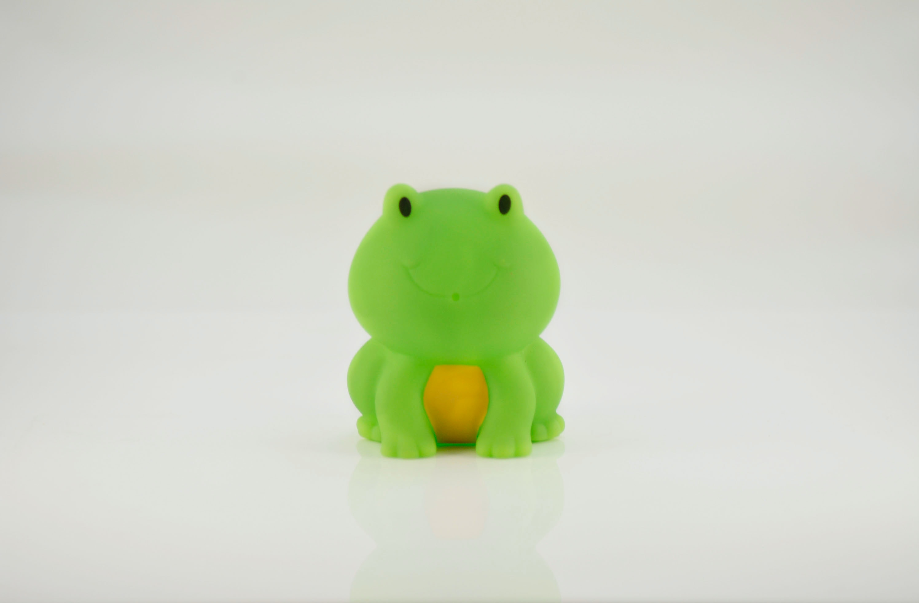 Free stock photo of bath toy, frog, frog toy