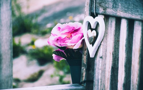 Selective Focus Photography of Pink Rose Flower and Silver-colored Heart Pendant Beside Gray Wooden Wal