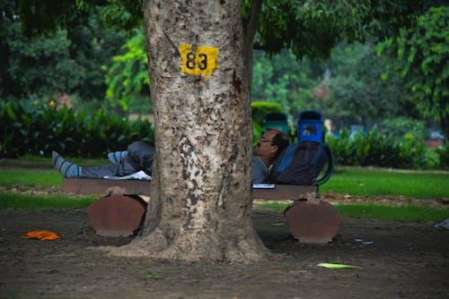 Foto profissional grátis de fotografia de rua