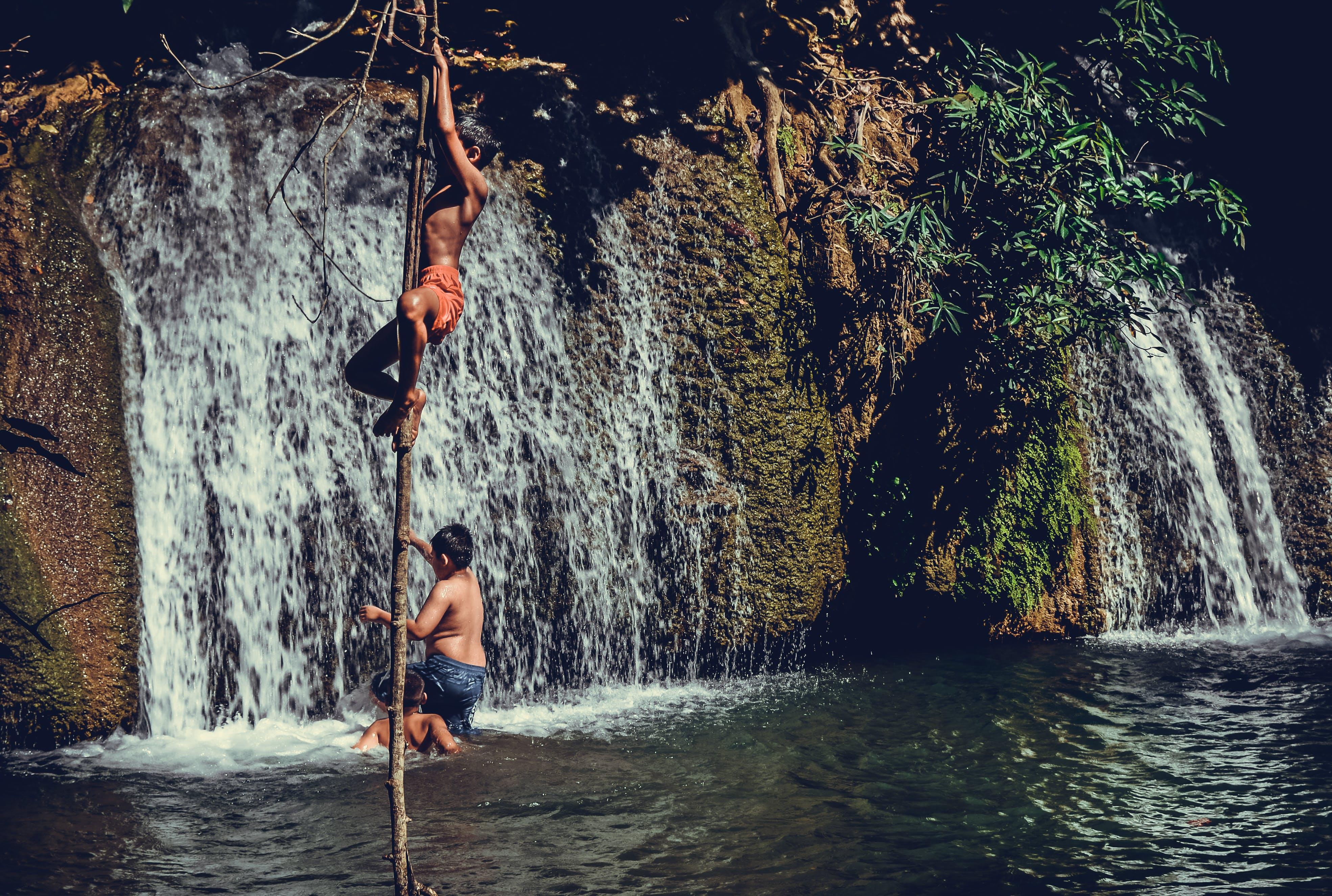 Children Climbing On Tree Branch Near Waterfalls