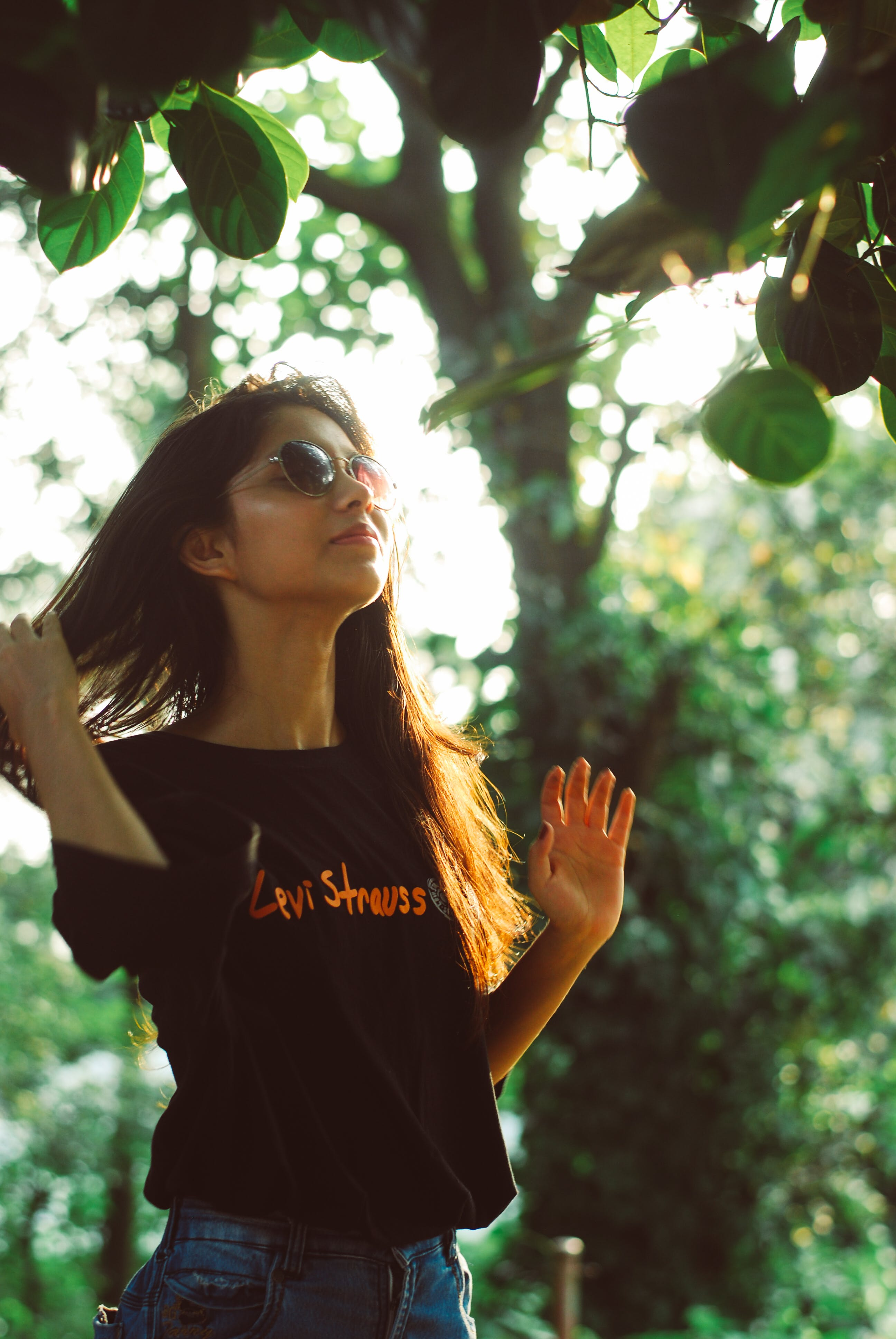 Free stock photo of beautiful girl, golden hour, nature