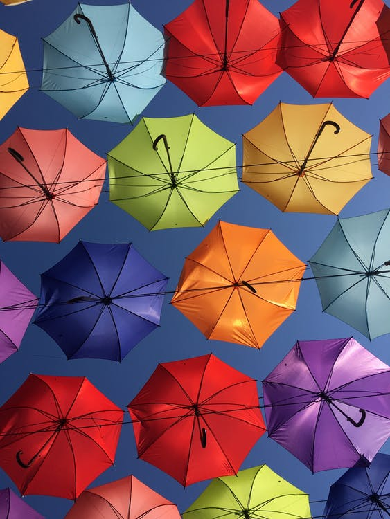 fargerik, hengende, paraplyer