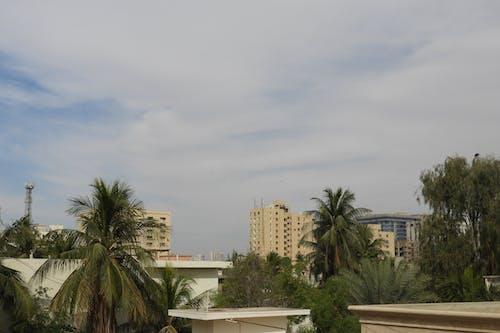 雲の無料の写真素材