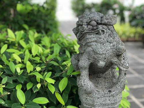 Free stock photo of Bangkok, stone, temple, thailand