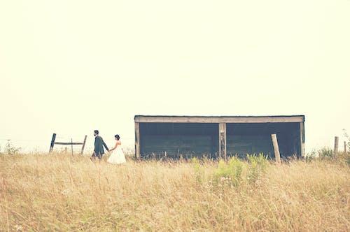 Couple Walking on Brown Grain Field