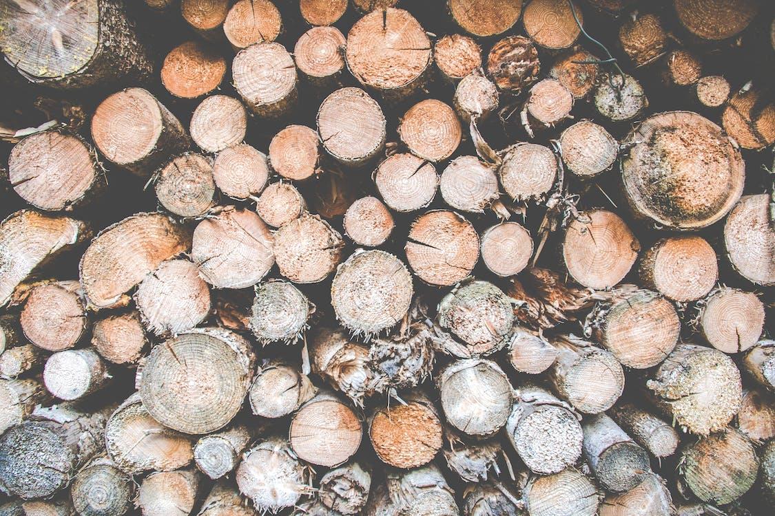 乾的, 切碎的木頭, 原本
