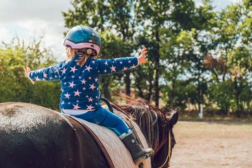 Δωρεάν στοκ φωτογραφιών με άλογο, αναβάτης, άνθρωπος, άτομο