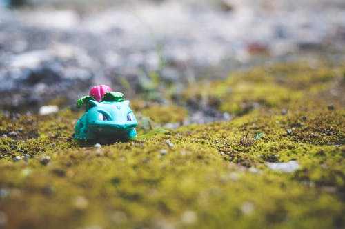#pokemon #toys #nature #green #petsの無料の写真素材
