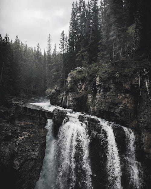 Základová fotografie zdarma na téma časosběr, denní světlo, hory, jehličnan