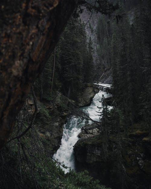 Time-lapse Photography of Waterfalls Surrounded by Trees