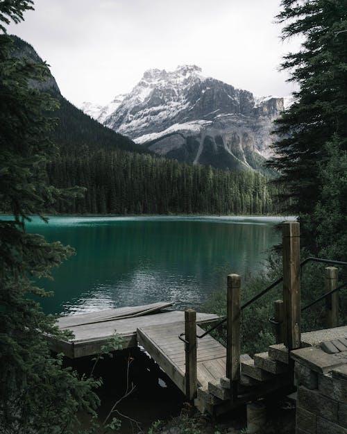 Kostenloses Stock Foto zu bäume, berg, fluss, landschaft