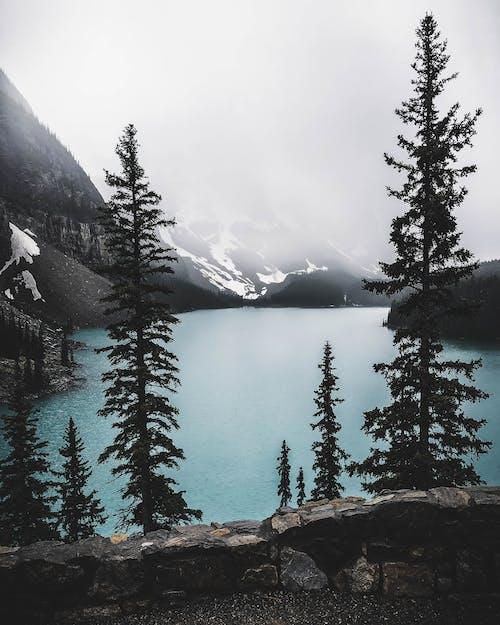 Lake Surrounded by Mountain Taken