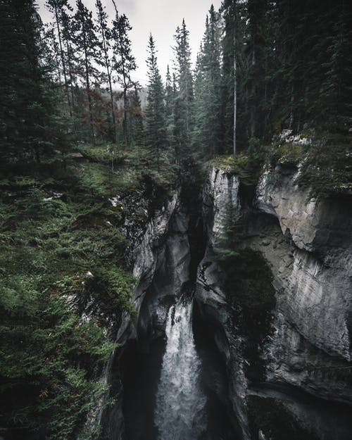 Waterfalls in Between Forest