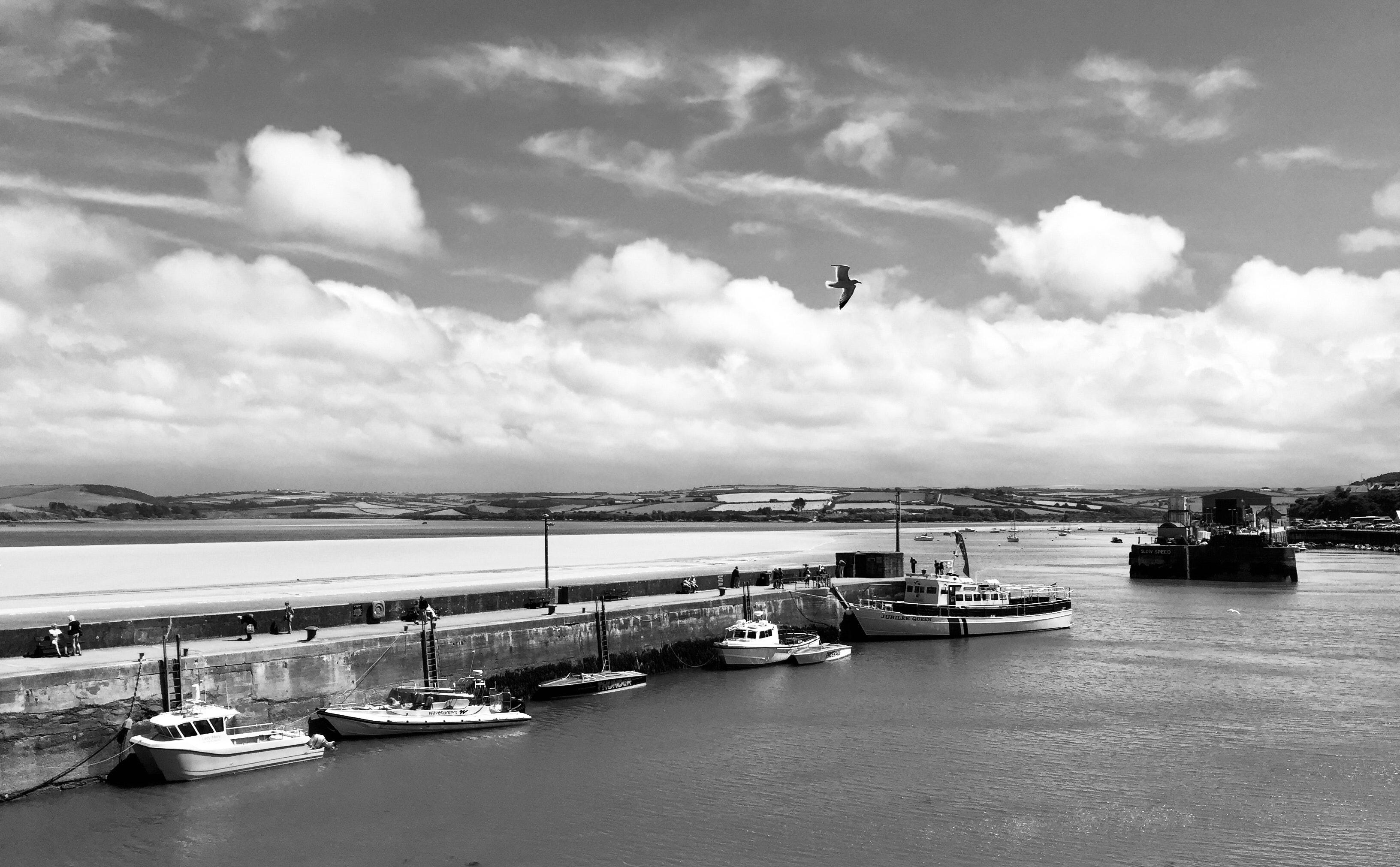 Free stock photo of black and white, sea
