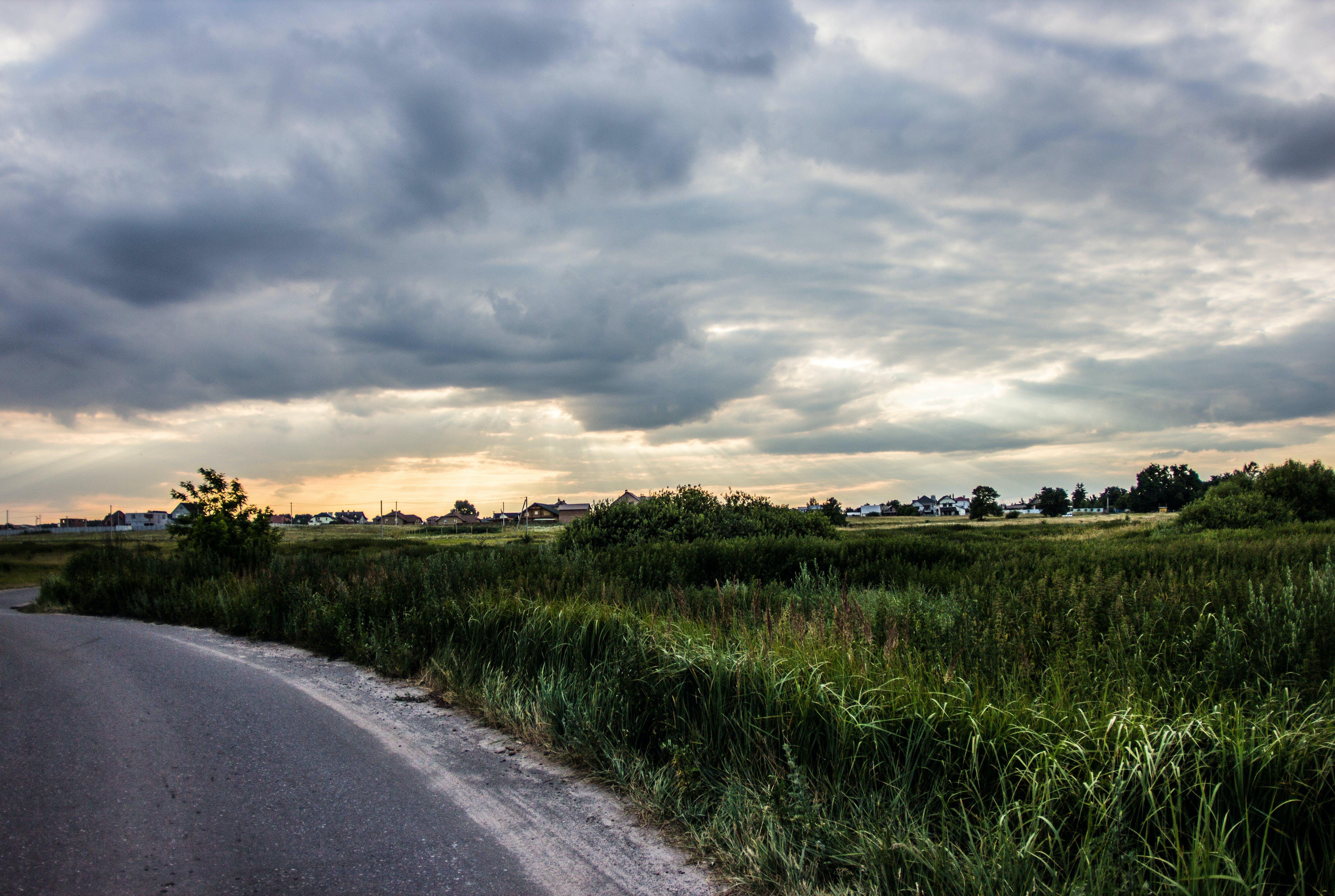 clouds, field, grass