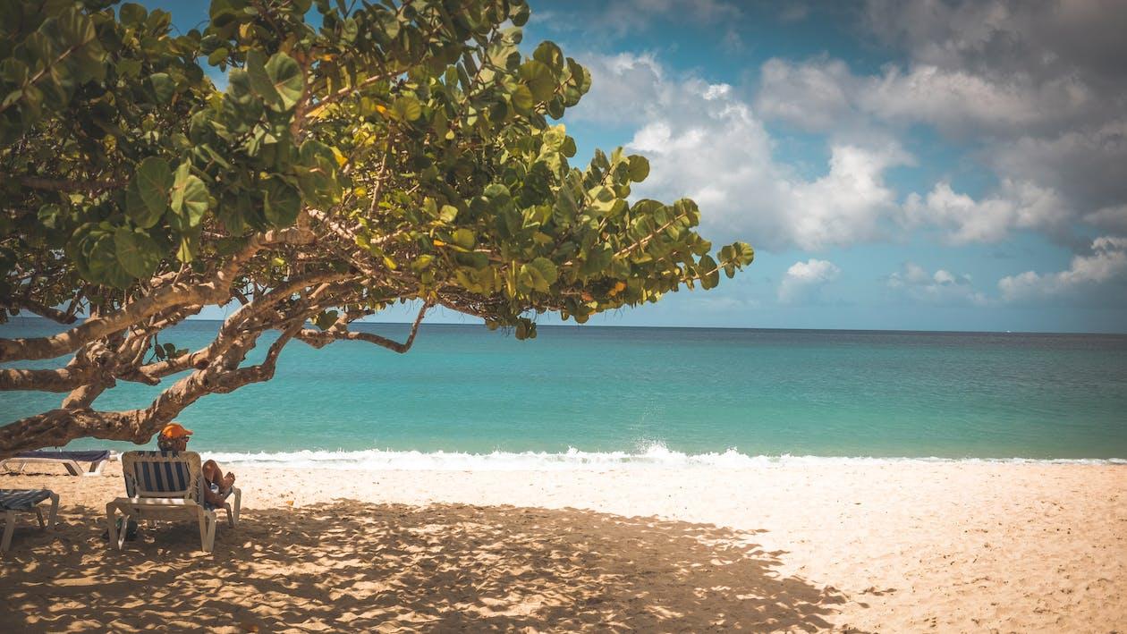 afslapning, caribien, ferie