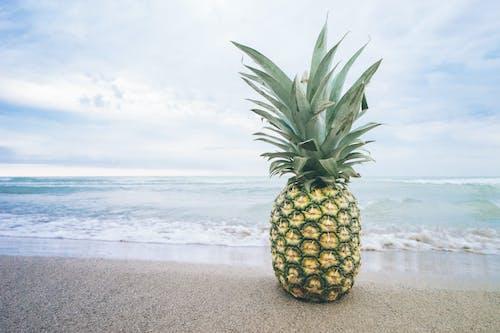 Foto stok gratis air, buah, buah tropis