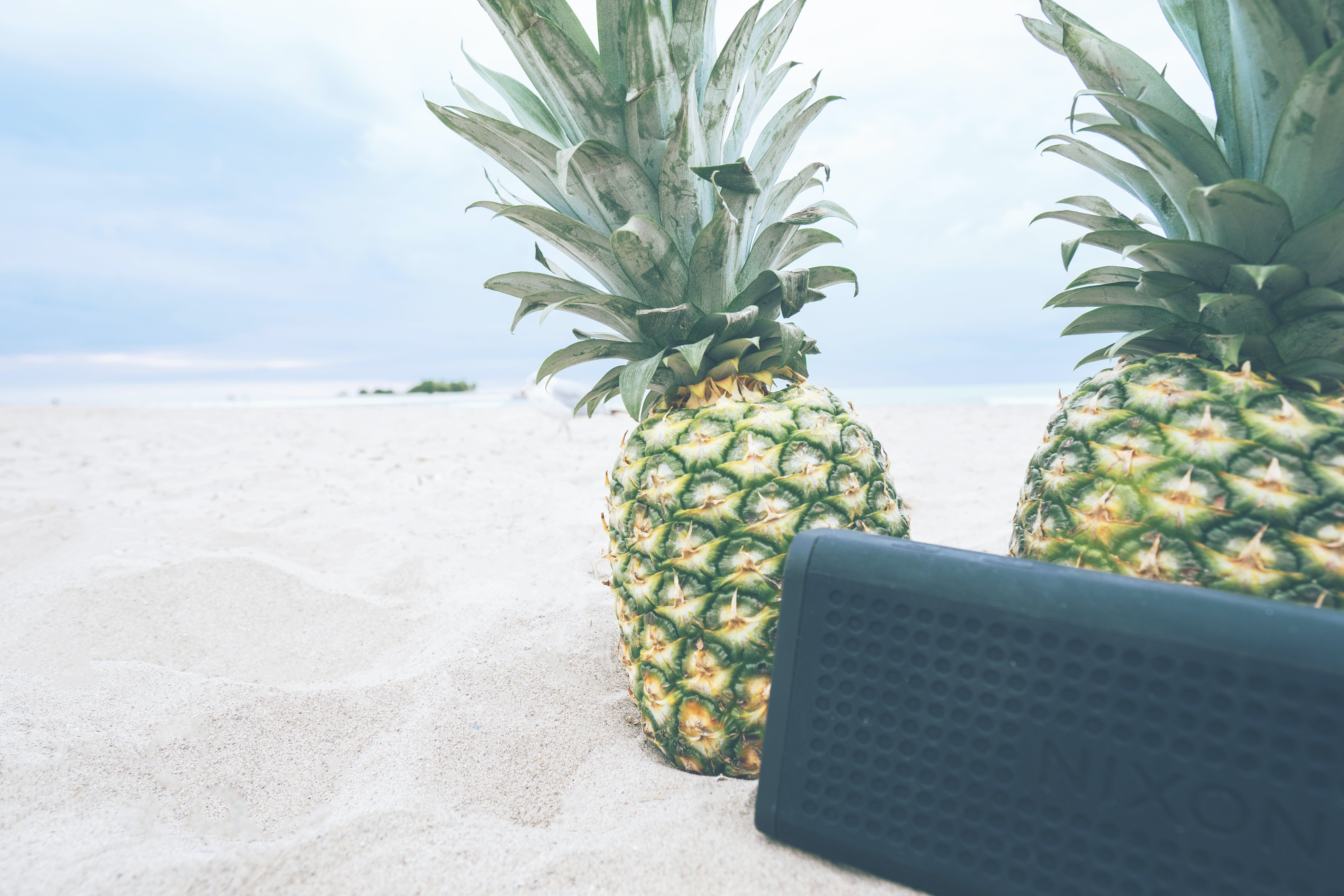 Two Green Pineapple Fruits on Sand