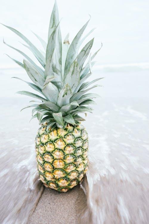 Fotobanka sbezplatnými fotkami na tému ananás, breh, čerstvosť, čerstvý