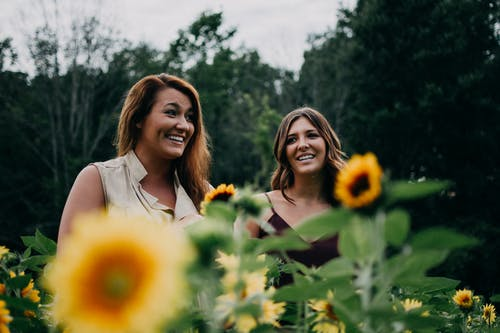 Two Women Standing On Sunflower Garden