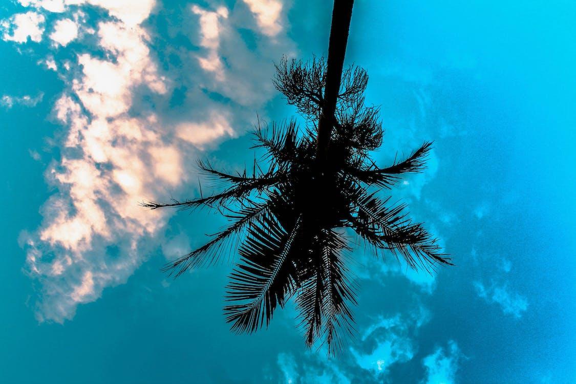 à l'envers, bleu, ciel bleu