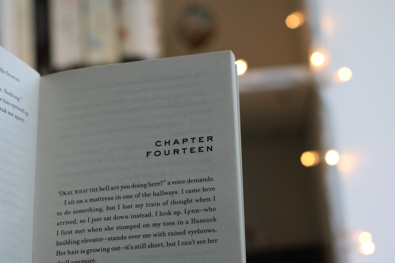Základová fotografie zdarma na téma kapitola, makro, strana